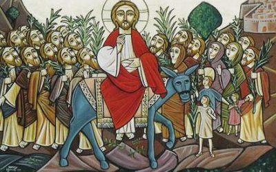Dimanche 28 mars : homélie du dimanche des Rameaux et de la Passion