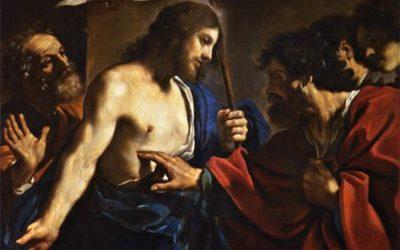 Homélie de Mgr Colomb – Dimanche de la Miséricorde